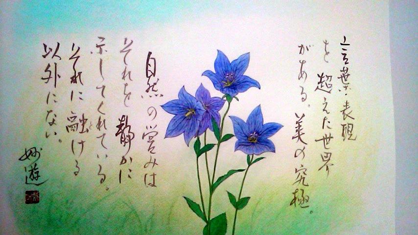 shifuku59